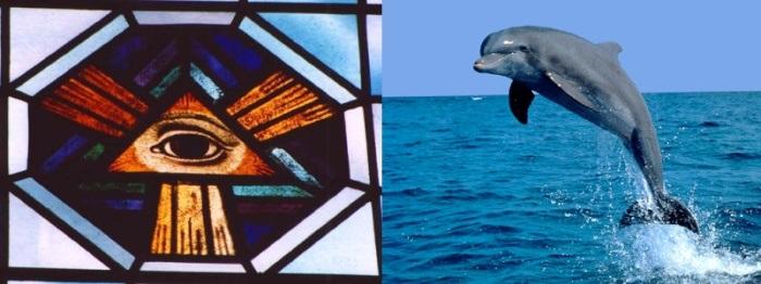 Äon der Äonen delfin